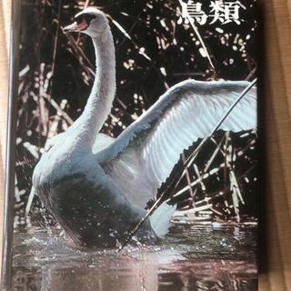 ライフネーチュアライブラリー鳥類