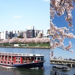(都内コスパNo1お花見クルージング+飲み会‼️さらにビスケット...