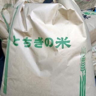 令和2年 栃木県産 あさひの夢 玄米 20キロ ⑧