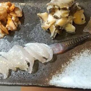 4/3土曜日 国産天然な美味貝自分で採取して味わってみませんか~...