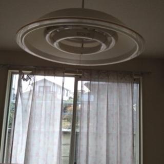 天井照明電気傘蛍光灯タイプ