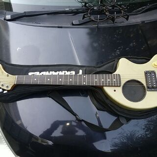 フェルナンデスギター