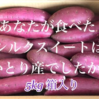 A等級品 千葉県かとり産 シルクスイート5kg 絹の様に滑らかな...