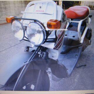 ホンダ ズーマ 白 50CC バイク 中古車