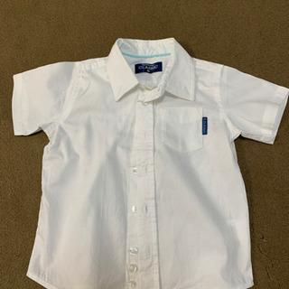 白シャツ フォーマル  半袖