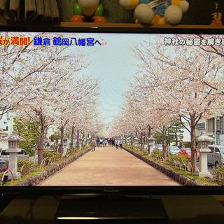 Panasonic 32型 液晶テレビ