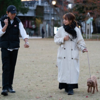 公認ドッグトレーナー直伝!愛犬のしつけ方、飼い方を優しくお伝えします! - 川越市