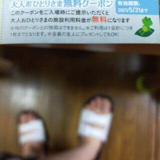 【ネット決済・配送可】無料券!ファンタジーキッズリゾート