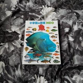 小学館の図鑑 NEO ネオ 魚