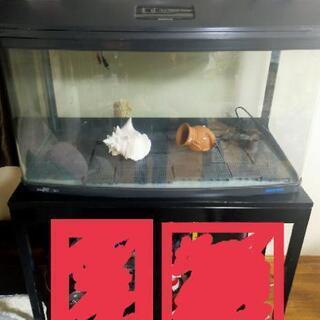 水槽 観賞魚用水槽 Newスティングレー 3シリーズ R3…