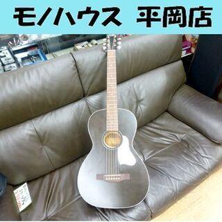 アート&ルシアー アコースティックギター Art & Luthe...