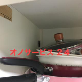名古屋市 ゴキブリ、蜂の巣駆除、コウモリお任せください‼️