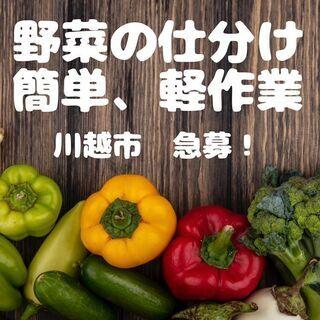 【時給1,200円!】野菜仕分け・倉庫内軽作業!<川越・柏急募!!>