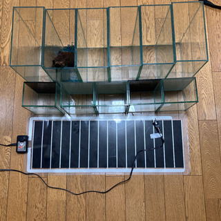 【ネット決済・配送可】ベタ水槽セット パネルヒーター付き