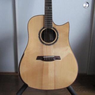 アコースティックギター(Rosetta WE、全単板)
