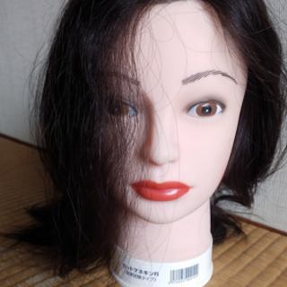 美容師国家試験用ウィッグ