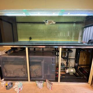 大型ガラス水槽2m×60cm×60cmオーバフローセット