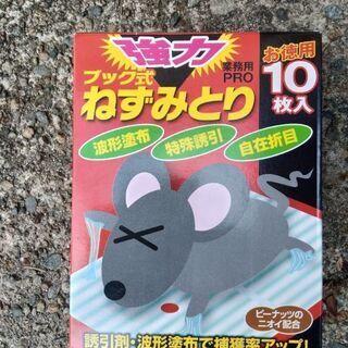 【ネット決済】ネズミ捕り