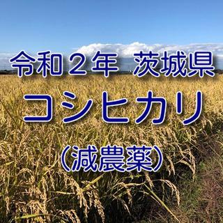 米 おこめ 白米 9kg