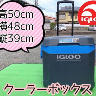 【409M1】IGLOO クーラーボックス
