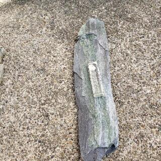 引き取り限定   石①