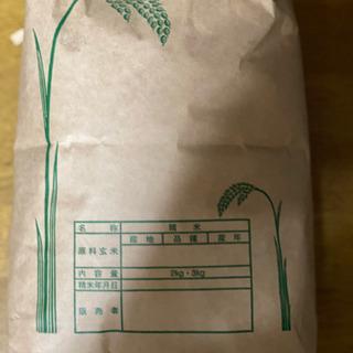 お米 3kg