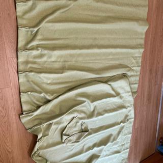 ニトリのカーテン 緑色