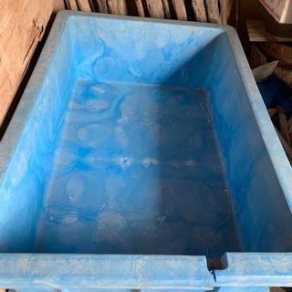 ダイライト!種籾!浸水!タンク!角型容器!水槽 !芽出し!…