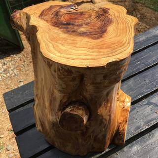 杉 オブジェ(2021年2月伐採)