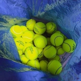 フォート 44球 テニスボール 硬式 中古