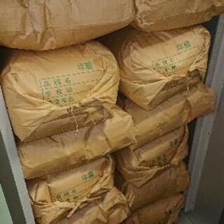 令和2年 9月 収穫  コシヒカリ30kg
