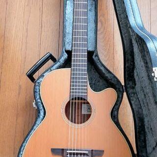 タカミネエレガットギターNPT110N:レア物