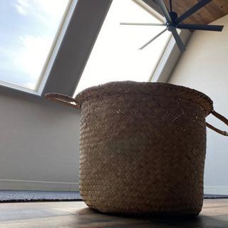 アクタス カゴ 鉢カバー 観葉植物 グリーン かご 籠