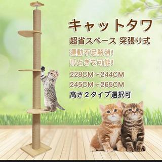 【RAKU】 キャットタワー 突っ張り 木登りタワー シン…