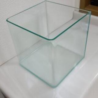 強化ガラス水槽 2個目 7L 20cm*20cm*20cm