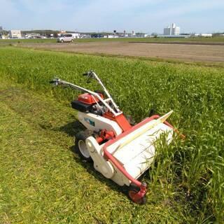 耕作放棄地の草刈り請け負います
