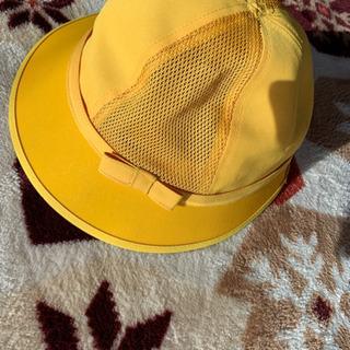 一年生の黄色帽子