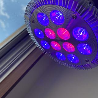 サンゴ育成LED2個セット新品 - 沖縄市