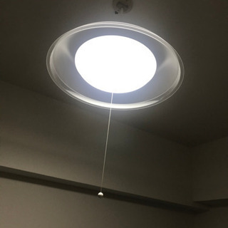 タキズミ LED ペンダントライト
