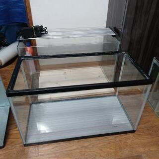 宮城仙台!600×300×360中古ガラス水槽!