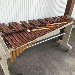 20N007 KOROGI コオロギ シロフォン 木琴 1…