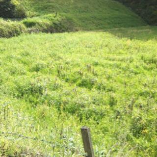 香川県仲多度郡まんのう町土地(農地)貸します 年間2万円