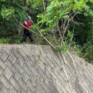 「草刈り・落ち葉掃除・建物の簡易補修・その他」