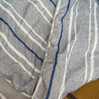 カインズ 薄手の布団