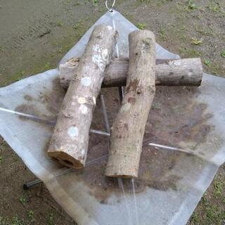焚き火上級者向け!広葉樹の生木丸薪(10kg約15本)。茨城県潮来市。