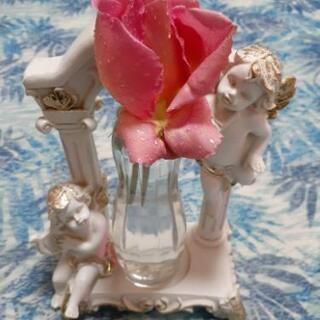 四季咲きの薔薇の鉢です。