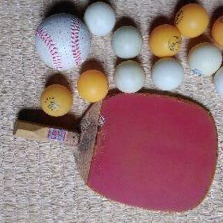 卓球 ラケット&球