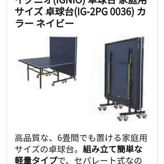 IGNIO イグニオ 卓球台 コンパクト - スポーツ
