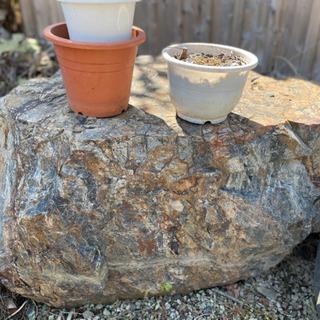 庭の残った石の画像