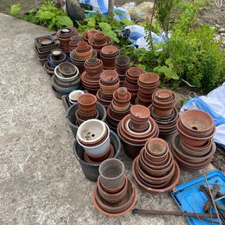 植木鉢 - いすみ市